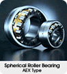 Spherical Roller Bearing AFX Type
