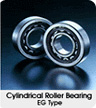 Cylindrical Roller Bearing EG Type